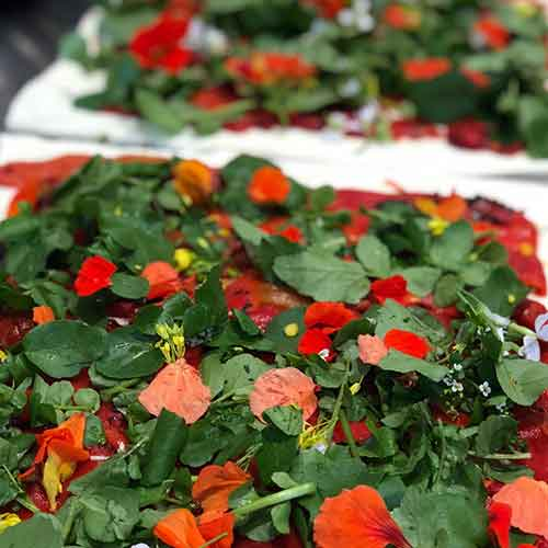 herbs-red-green-500x